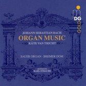 Organ Works: Romantic Edition