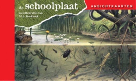 Afbeelding van Ansichtkaarten, de Schoolplaat  In Ons Land speelgoed