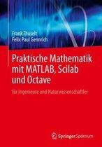Praktische Mathematik Mit Matlab, Scilab Und Octave