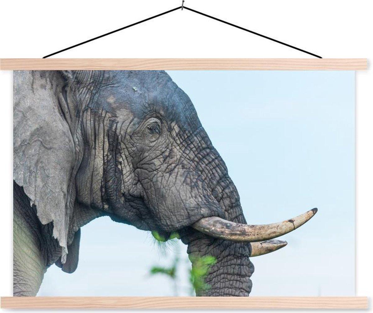 Close-up van een Afrikaanse olifant textielposter latten blank 120x80 cm - Foto print op schoolplaat (wanddecoratie woonkamer/slaapkamer)