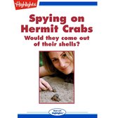 Spying on Hermit Crabs
