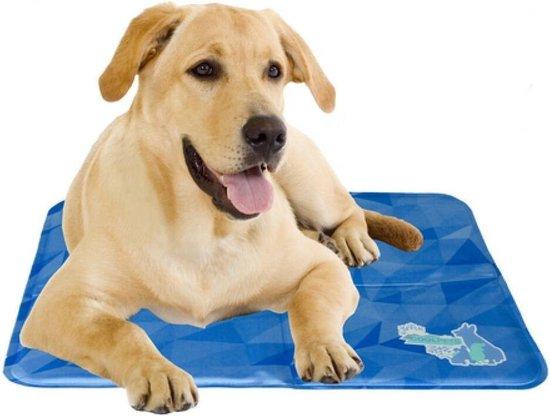 Cool Dog Koelmat 24/7 - 50x40 cm - M - Blauw