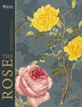 RHS The Rose