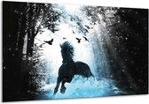 Glas schilderij Paard, Dieren | Blauw, Zwart, Wit | 120x70cm 1Luik | Foto print op Glas |  F007020