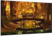 Glasschilderij Natuur | Bruin, Geel, Goud | 120x70cm 1Luik | Foto print op Glas |  F001338