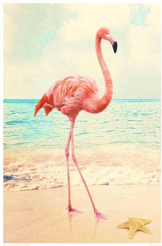 REINDERS Flamingo - Schilderij - 60x90cm - Reinders