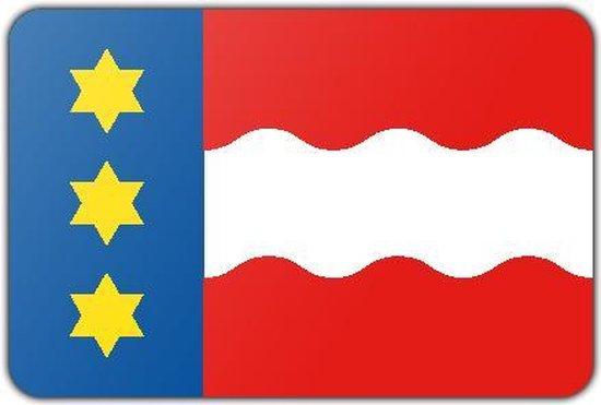 Vlag gemeente Dongeradeel - 100 x 150 cm - Glanspolyester