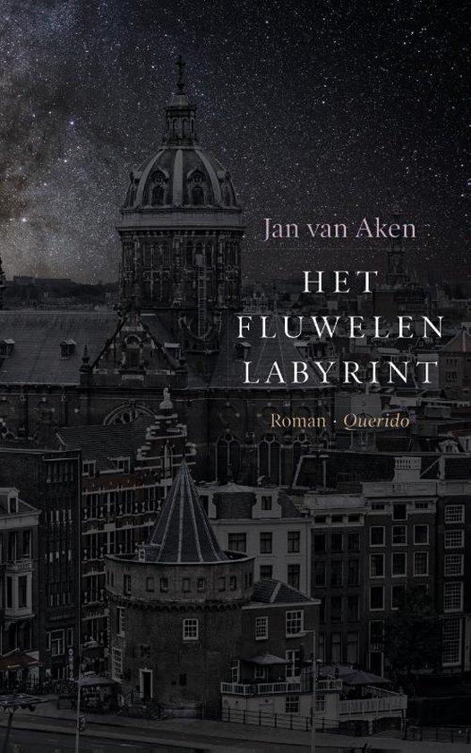 Het fluwelen Labyrint - Jan van Aken  