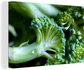 Close-up van stukjes broccoli Canvas 180x120 cm - Foto print op Canvas schilderij (Wanddecoratie woonkamer / slaapkamer) XXL / Groot formaat!