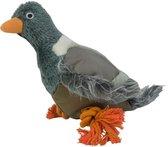 Wild Life Dog Pigeon (Duif)