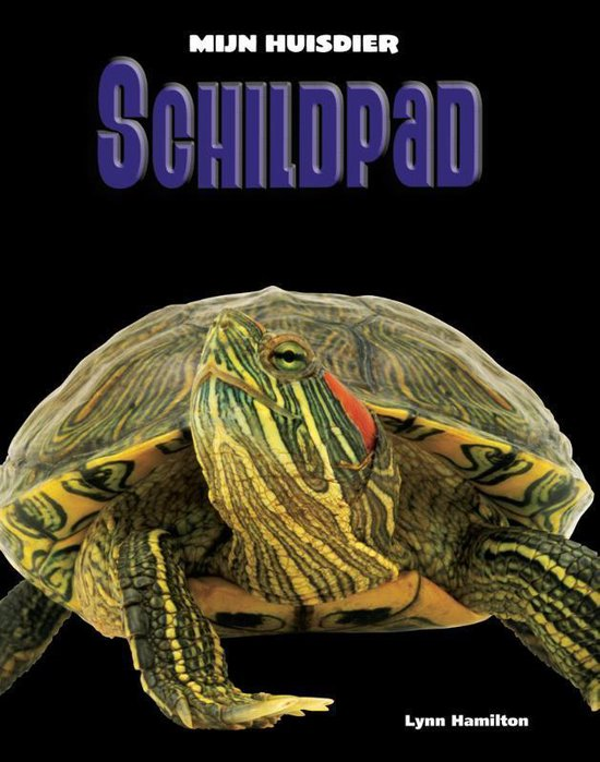 Mijn Huisdier - Schildpad - Lynn Hamilton |