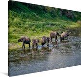 Olifanten in de rivier van het Nationaal park Makgadikgadi Pans Canvas 140x90 cm - Foto print op Canvas schilderij (Wanddecoratie woonkamer / slaapkamer)