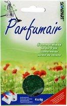 Scanpart Parfumair Stofzuigerverfrisser - Geurkorrels - Zomerweide - 4 x 6g