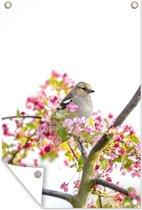 Tuinposters buiten - Vogel tussen roze bloemen - 60x90 cm