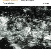 Valery Afanassiev - Schubert: Moments Musicaux - Sonata D 850
