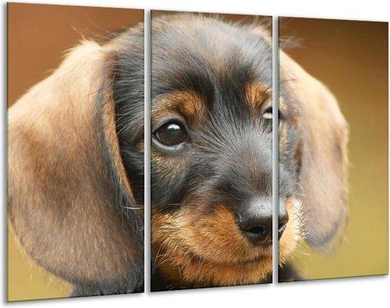 Canvas schilderij Hond | Grijs, Zwart, Bruin | 120x80cm 3Luik