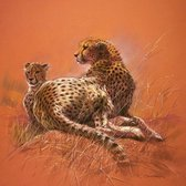 Renato Casaro - Cheetah Mother Kunstdruk 50x50cm