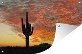 Tuinposter - Saguaro cactus bij zonsondergang - 180x120 cm - XXL