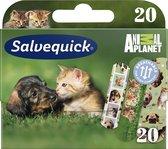 Animal Planet pleisters voor kinderen 20st.