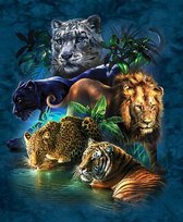 SEOS Shop ®  Diamond Painting Pakket Katachtige Ras - Tijger - Leeuw - Panter - Volledig - Diamond Paintings - Vierkant  - Dotz -  40x50cm