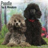 Poodle Toy & Miniature 2021
