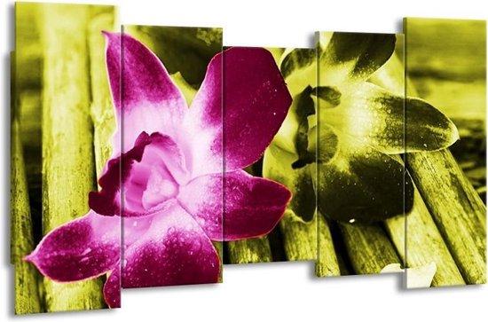Canvas schilderij Bloem   Roze, Groen, Wit   150x80cm 5Luik