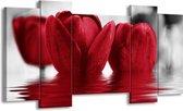 Canvas schilderij Tulpen | Zwart, Rood, Grijs | 120x65 5Luik