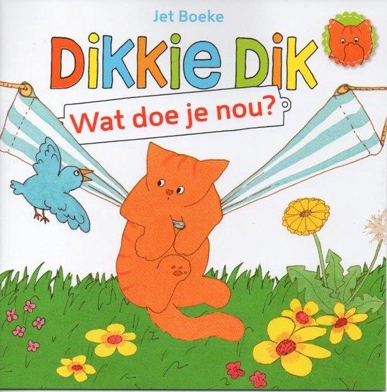 Dikkie Dik - Wat doe je nou? - Voorleesboek