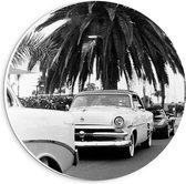Forex Wandcirkel - Zwart/Wit Auto's met Palmbomen - 20x20cm Foto op Wandcirkel (met ophangsysteem)