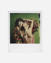 Aat Veldhoen. Polaroids