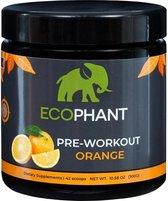 Ecophant Pre-Workout Orange - 100% organisch