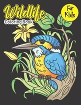 Wildlife Coloring Book For Kids