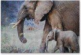Graphic Message Schilderij op Canvas Olifant met Jong - Natuur Kunst - Woonkamer