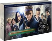 Fantastic Beasts and Where to Find Them (Blu-ray & DVD) (Limited editon met toverstaf)