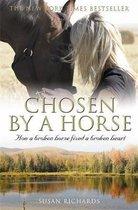 Chosen by a Horse