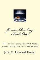 Junior Reading Books