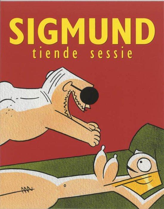 Sigmund Tiende sessie - P. de Wit |