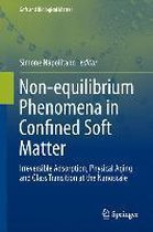 Non-equilibrium Phenomena in Confined Soft Matter