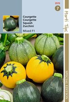 Hortitops Courgette mixed round F1