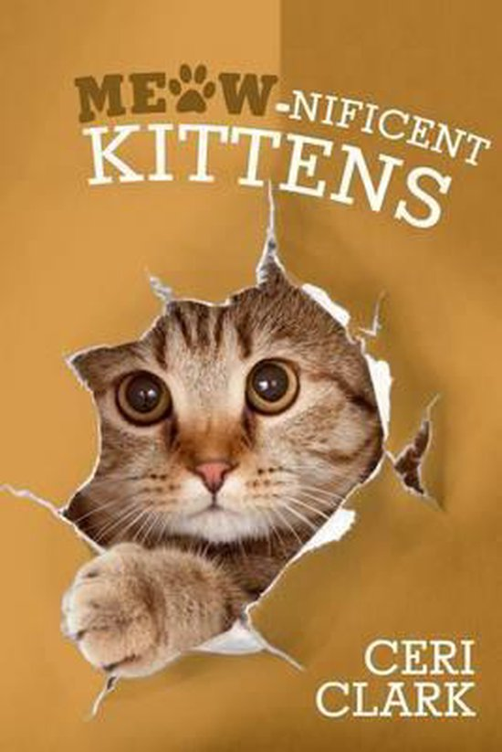 Meow-nificent Kittens