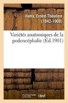 Varietes Anatomiques de la Podencephalie