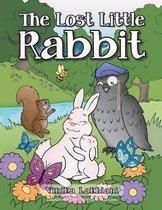 Boek cover The Lost Little Rabbit van Vinika Lakhiani