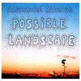 Possible Landscapes