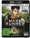 Maze Runner (Ultra HD Blu-ray & Blu-ray)