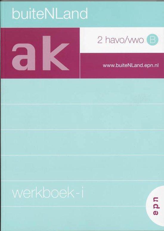 BuiteNLand / 2 Havo/vwo B / deel Werkboek-i - Michel de Boer |