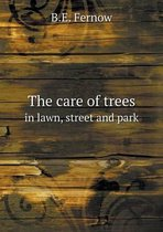 The Care of Trees in Lawn, Street and Park
