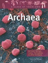 Archaea - A Class of their Own