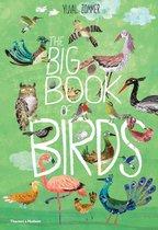 Boek cover The Big Book of Birds van Yuval Zommer