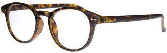 Icon Eyewear TCD003 Boston Leesbril +1.00 - Tortoise