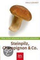 Steinpilz, Champignon & Co. - Mit Messer